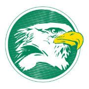 IRX Logo Eagle