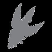 TRX Logo Footprint